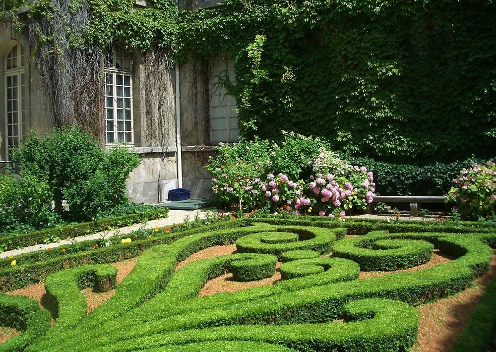 Plants Landscape